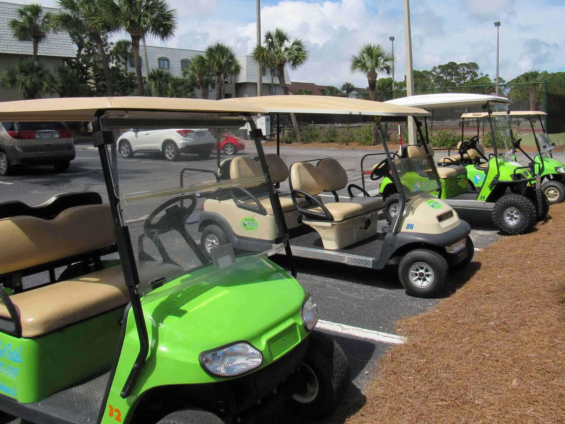 Golf Cart Rental We Seeum Rentals Fripp Island